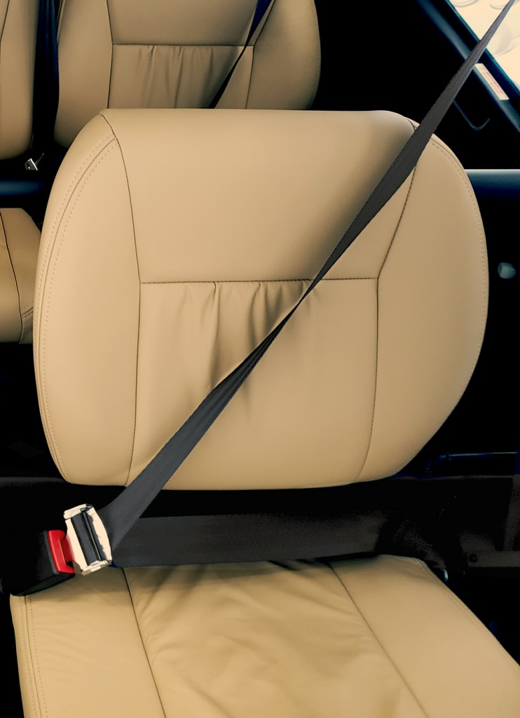 standard 3 point harness seat belt